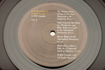 Bill Fontana - Field Recordings of Natural Sounds LP side A